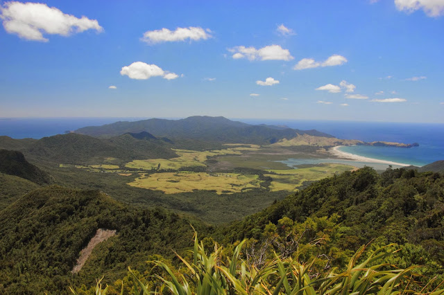 Mt Hobson Walk 22